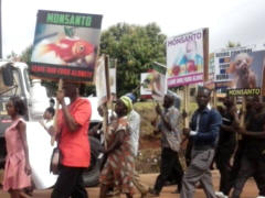 March against Monsanto, Ghana, 2015 - Foto: Food Sovereignty Ghana